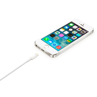Кабель Apple Lightning/USB (1м) (Аналог AAA) картинка 4
